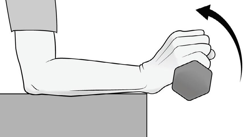 Lateral Epikondlit Fizik Tedavi El Bileği Ekstansiyon Güçlendirme Egzersizi
