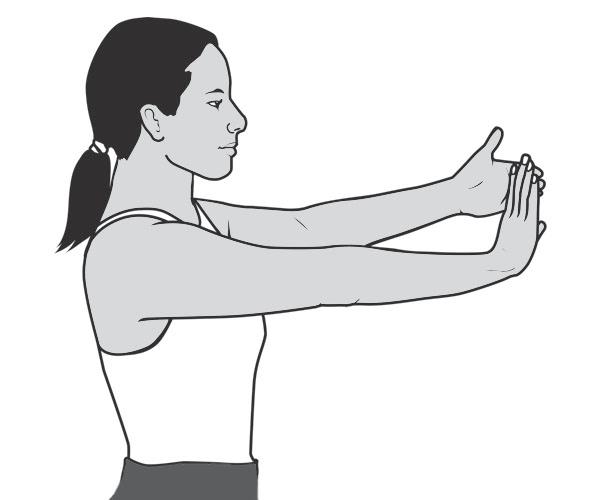 Lateral Epikondilit Fizik Tedavi El Bileği Germe Egzersizi
